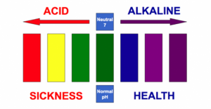 Choose the lifestyle of an Alkaline Vegan
