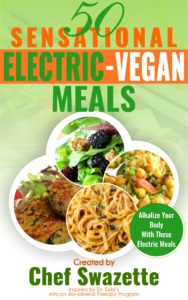 Upcoming Electric Vegan cookbook